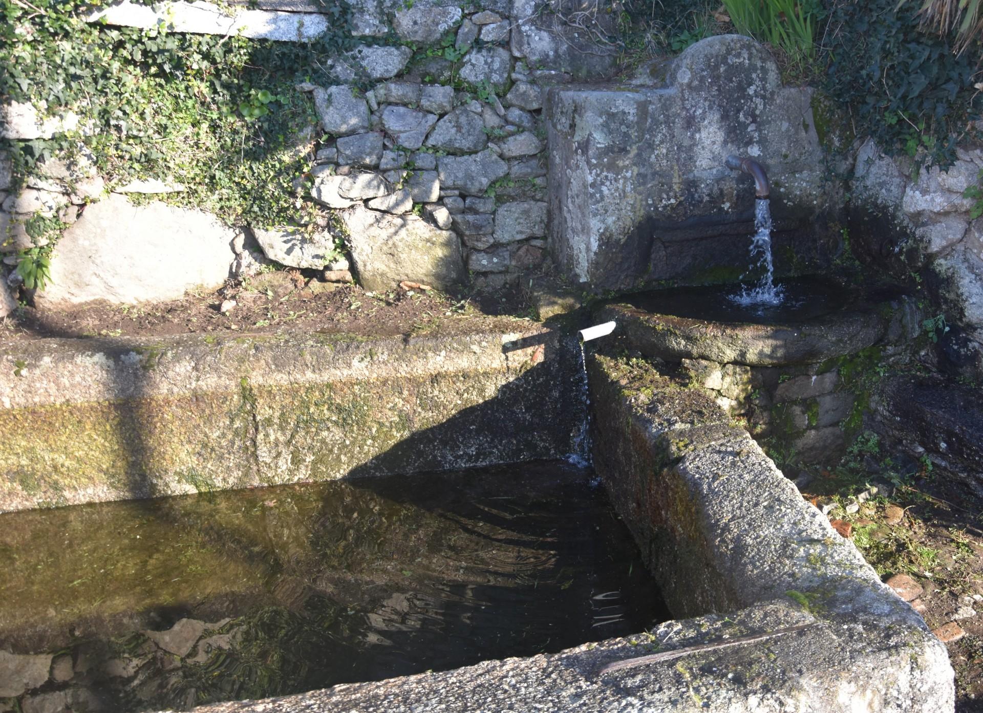Spring of Este River Route | Senda de la Naciente del Río Este