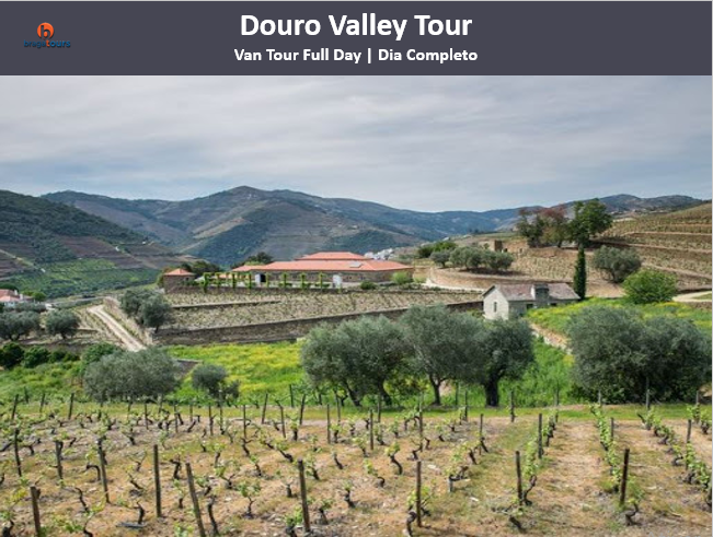 Douro Valley Tour | Total Pack