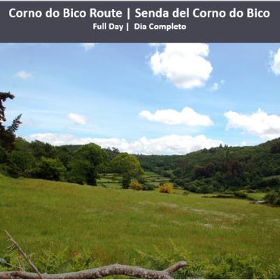 Corno do Bico Route | Senda del Corno do Bico