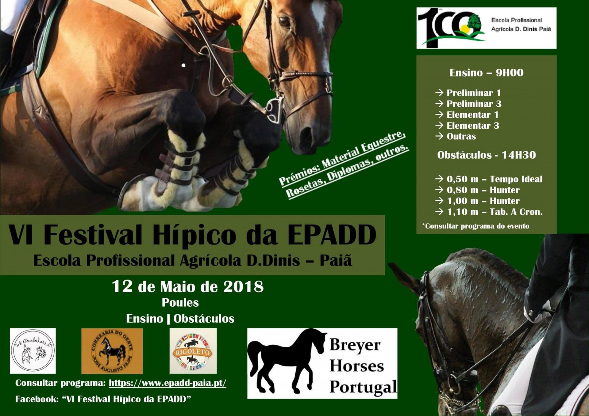 BHP Patrocina VI Festival Hípico da EPADD