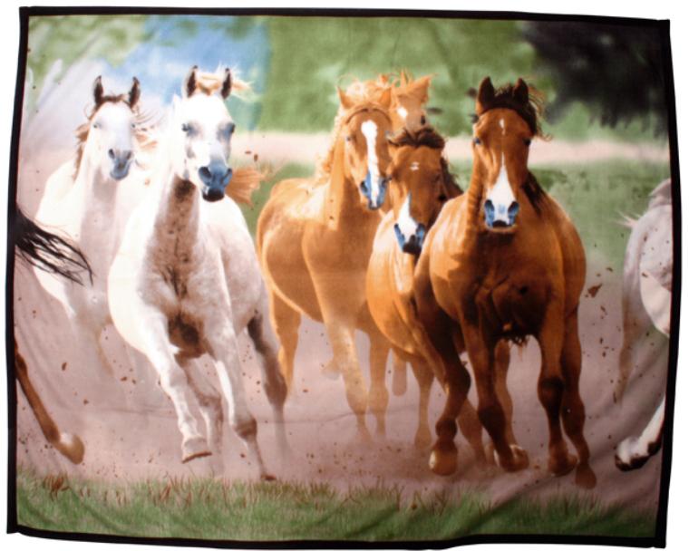 Manta Polar c/ Cavalos HKM