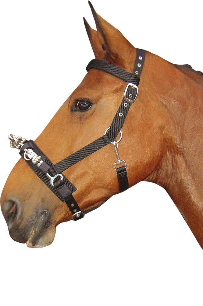 Serrilhão de Nylon HARRY'S HORSE