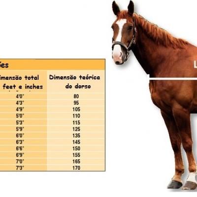 Qual o tamanho de cobrejão ideal para o seu cavalo?