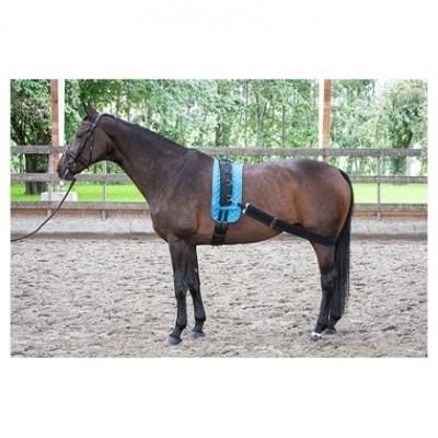 Elástico de Exercício HARRY'S HORSE