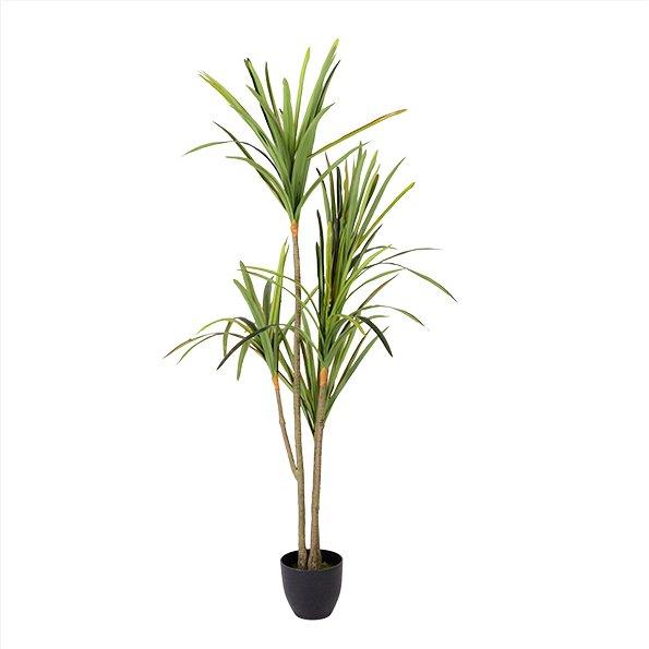Árvore Yucca Artificial (Altura - 160 cm)