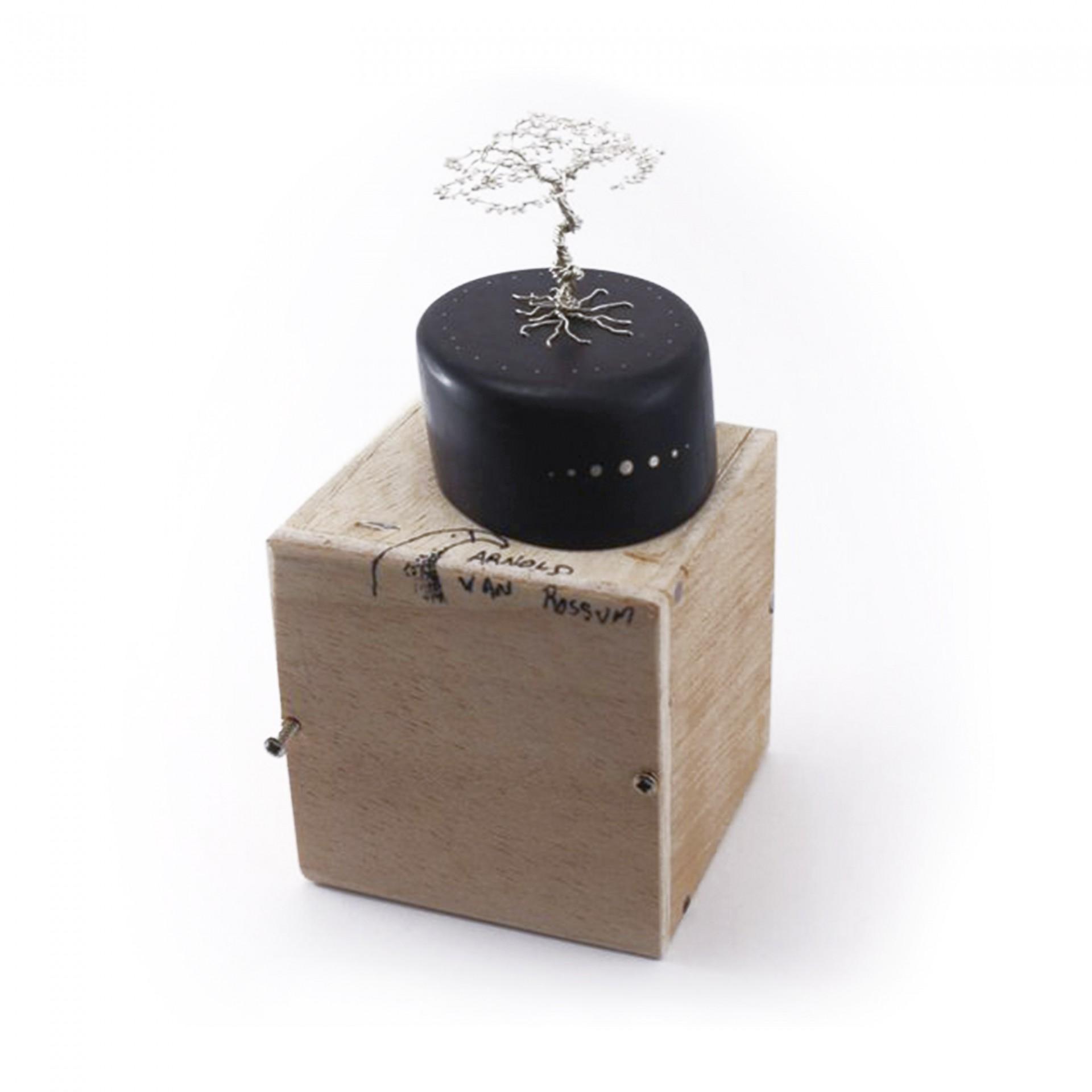 Silver Bonsai Tree on Black Ebony