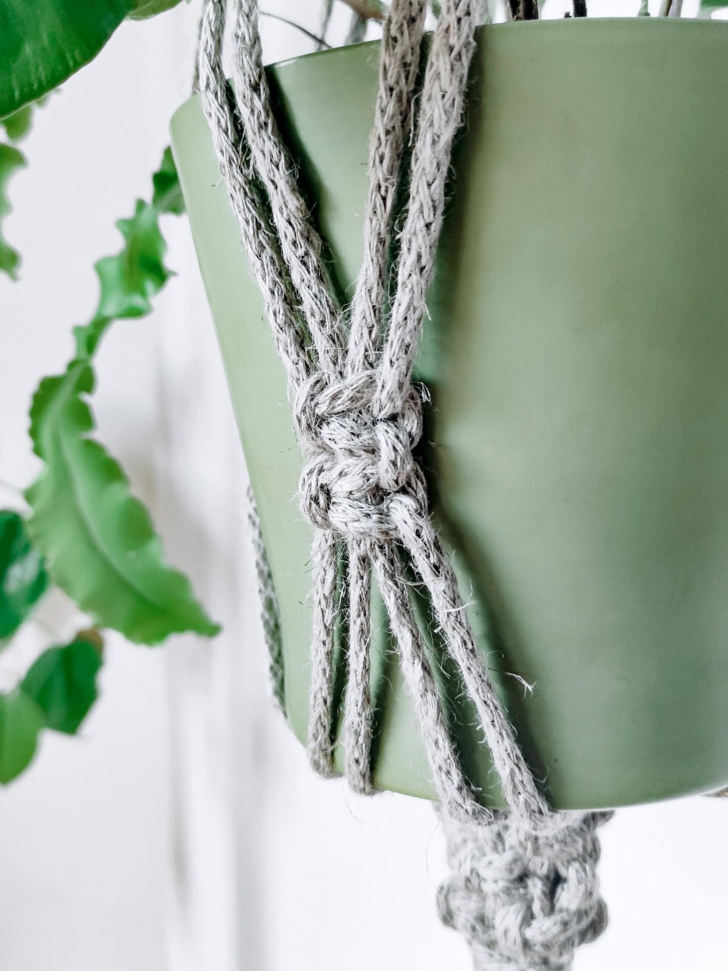 Plant Hanger n.1