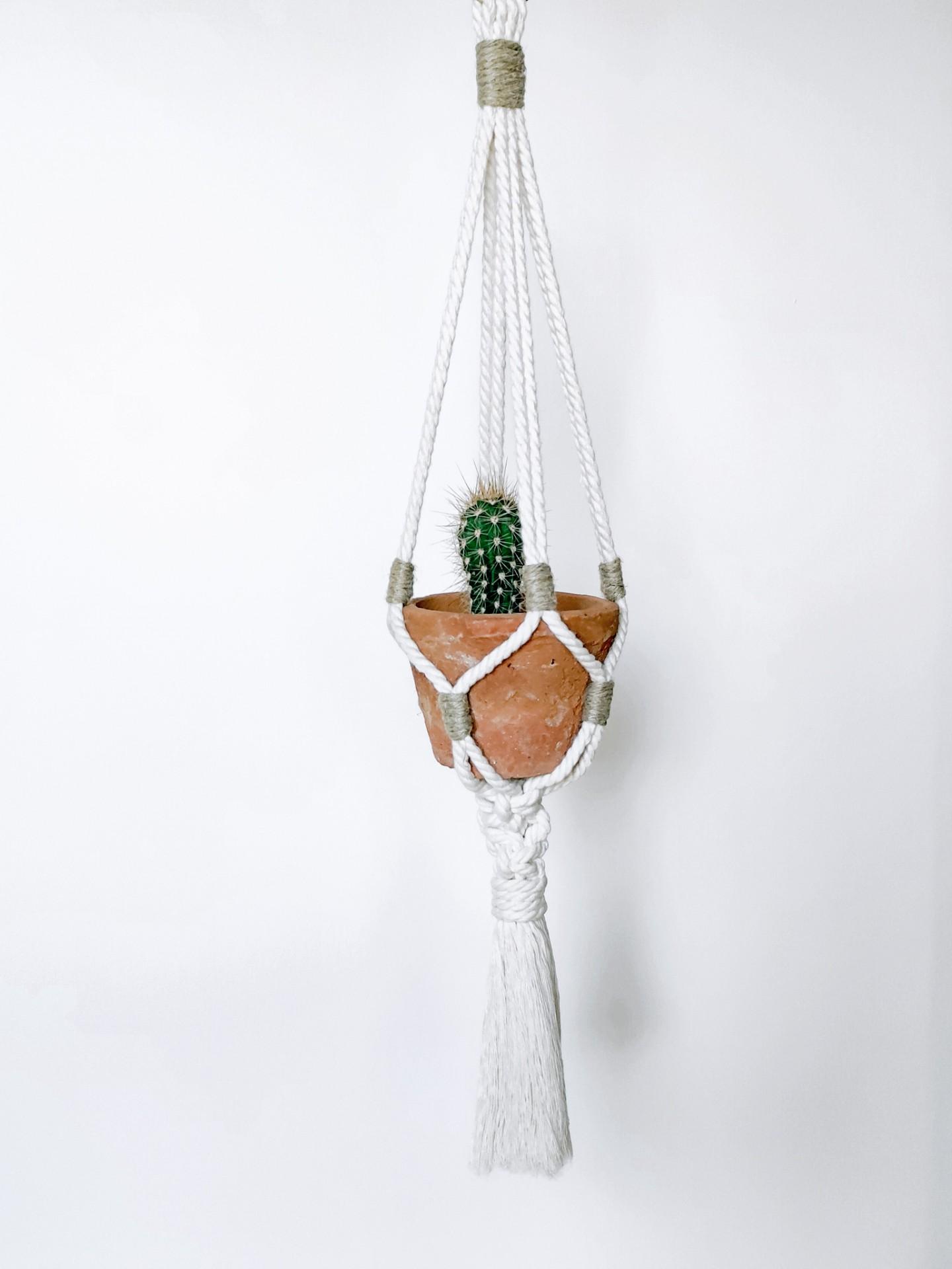 Plant Hanger n.4
