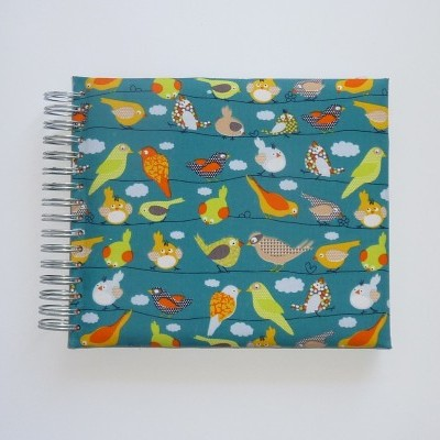Little birds (The baby's notebook)