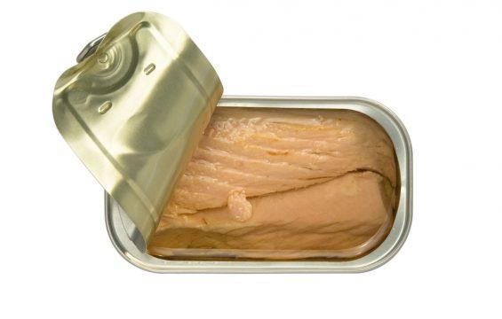 4 x Ventresca de atum em azeite