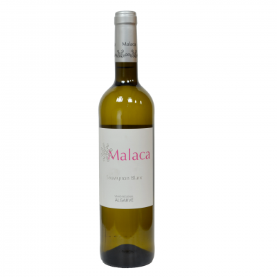Malaca – Sauvignon Blanc – Branco 2019