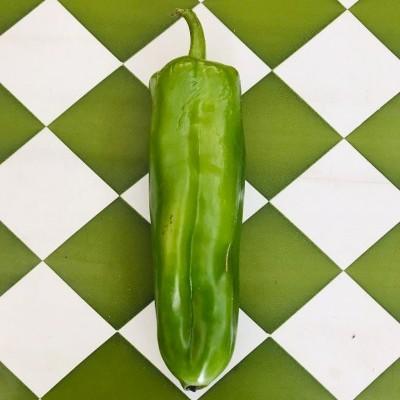 Pimento Vermelho e Verde  kg