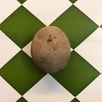 Batata Vermelha da nossa horta (kg)