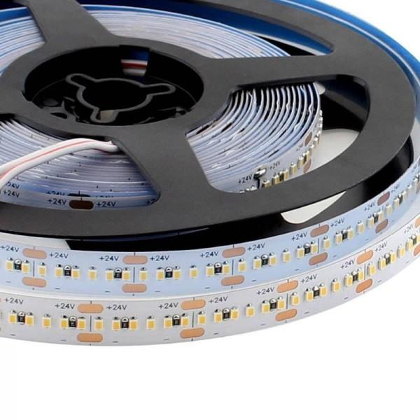 LED ProStrip 24VDC 20,16W/MT (100,80W) IP20