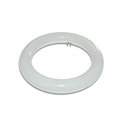 LED Tubo circular T9 20W 6000K