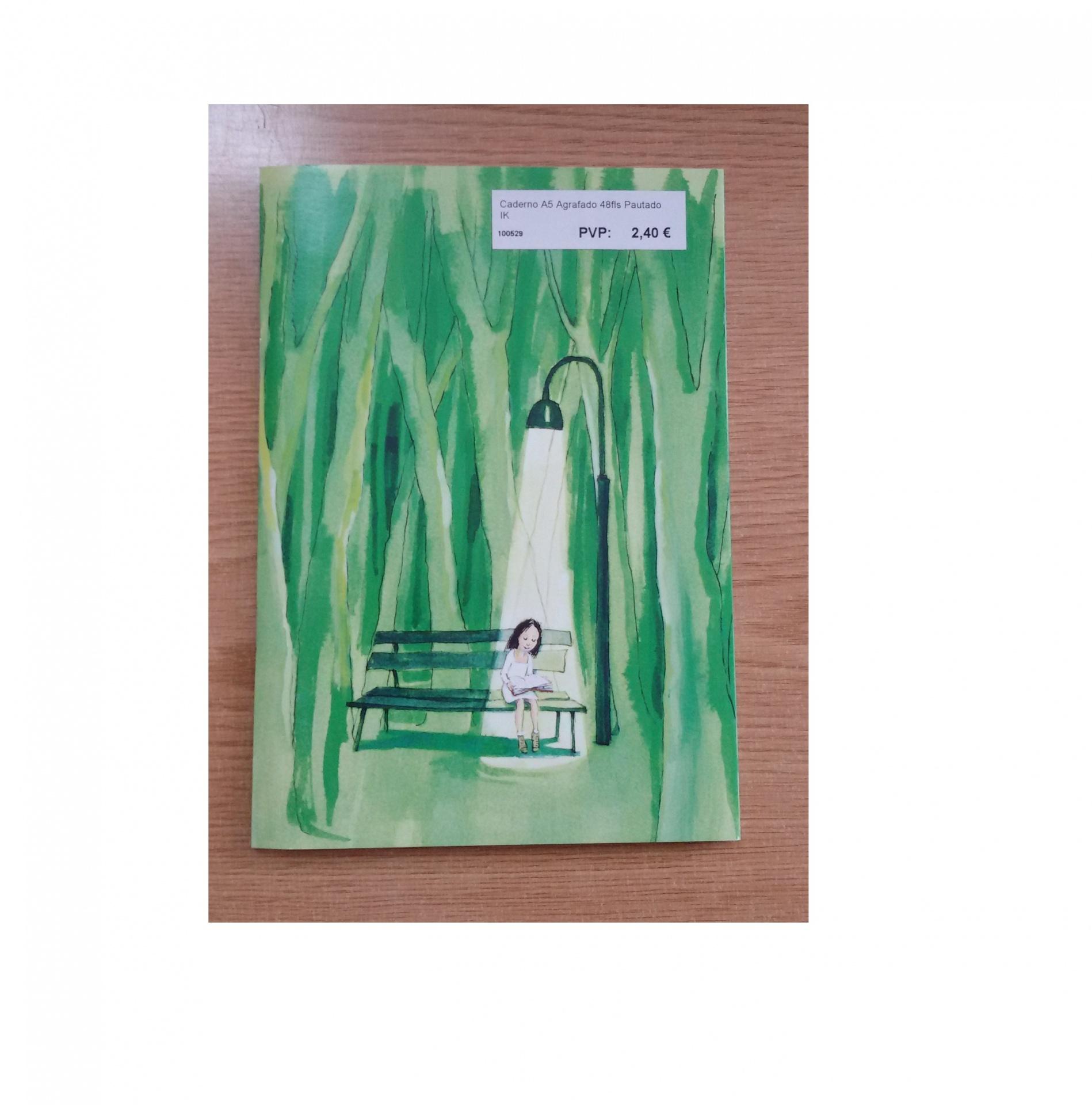 Caderno A5 Agrafado 48fls Pautado