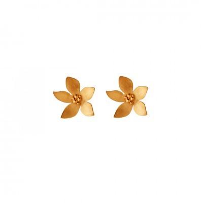 Brincos flor pequena