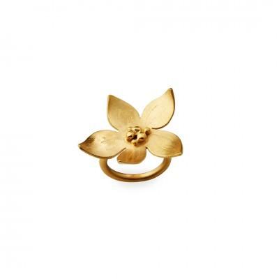 Anel flor simples