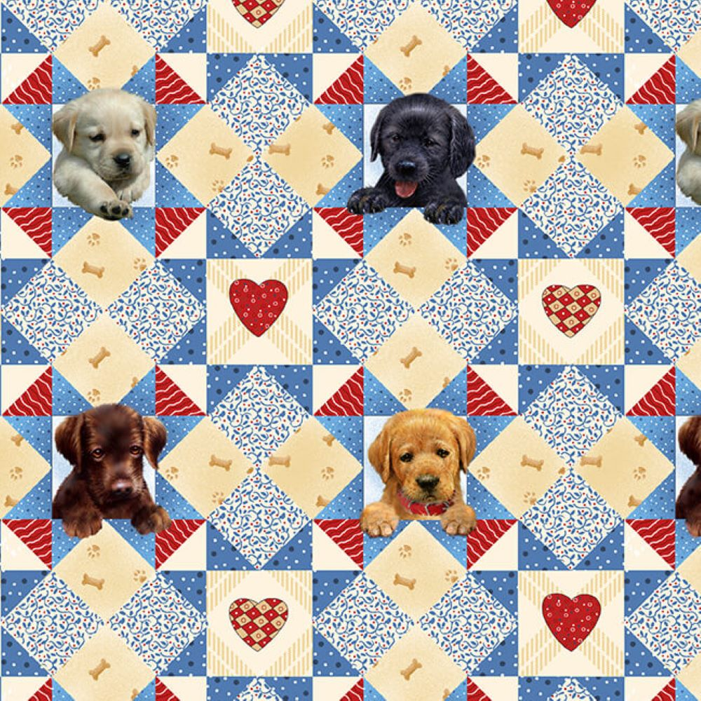 Puppies Start Quilt | Cyan :: Pups in the Garden | Henry Glass