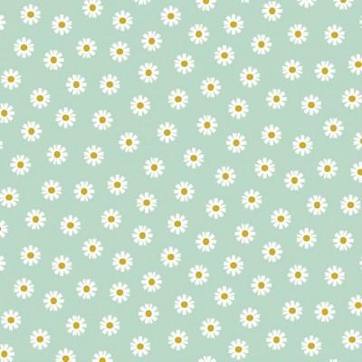 DAISY FLOWER   MENTA   POPPY