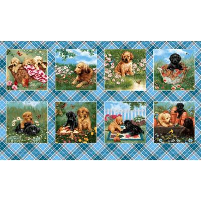 Panel   Blocks :: Pups in the Garden   Henry Glass