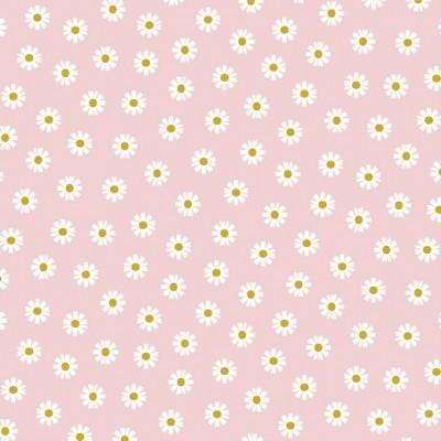 DAISY FLOWER | ROSA CLARO | POPPY