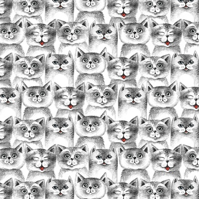 Funny Cats :: Cat Lovers | Fabricart