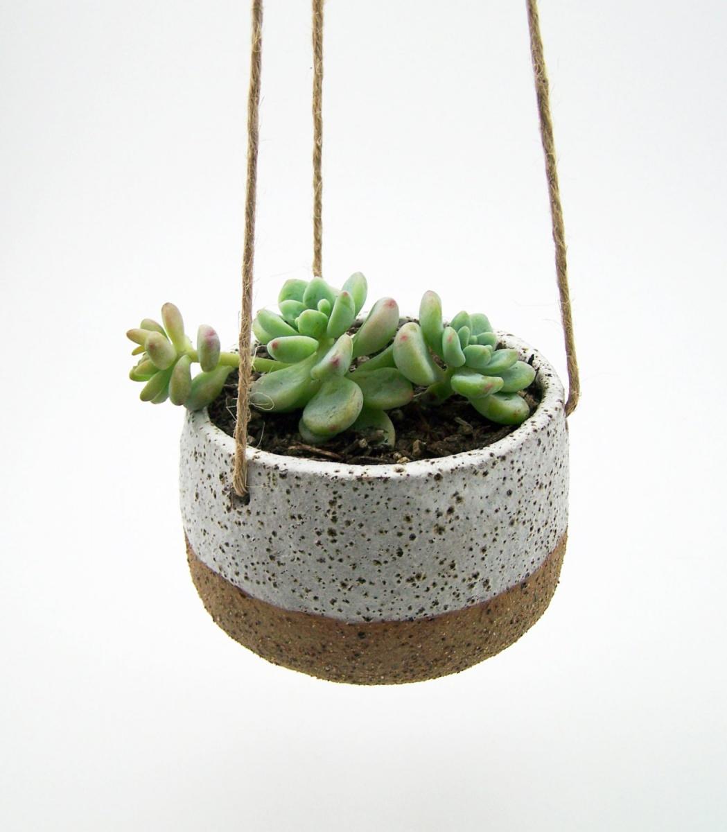 Hanging Succulent Planter David Shopkit