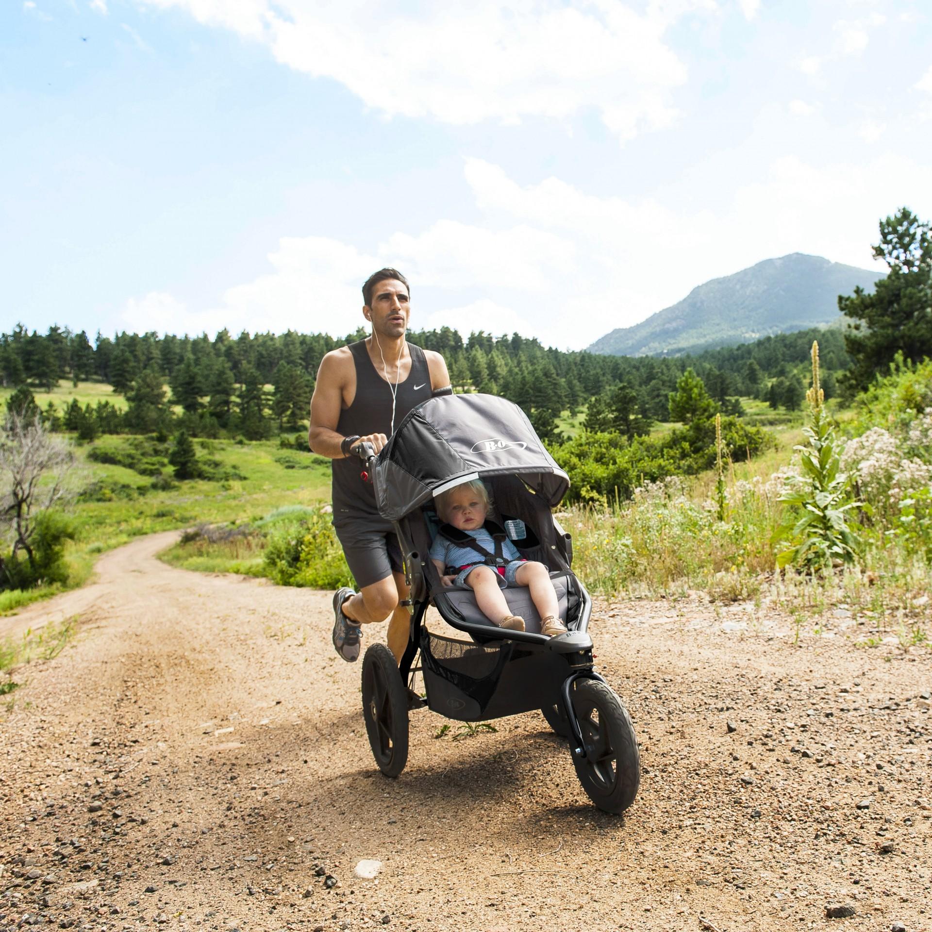 Carro bebé Britax Römer Bob Revolution Pro Baby Stroller
