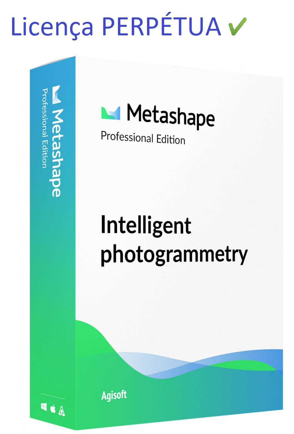 Agisoft Metashape Professional Edition (Licença Perpétua)