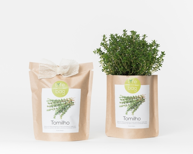 Grow Bag Tomilho