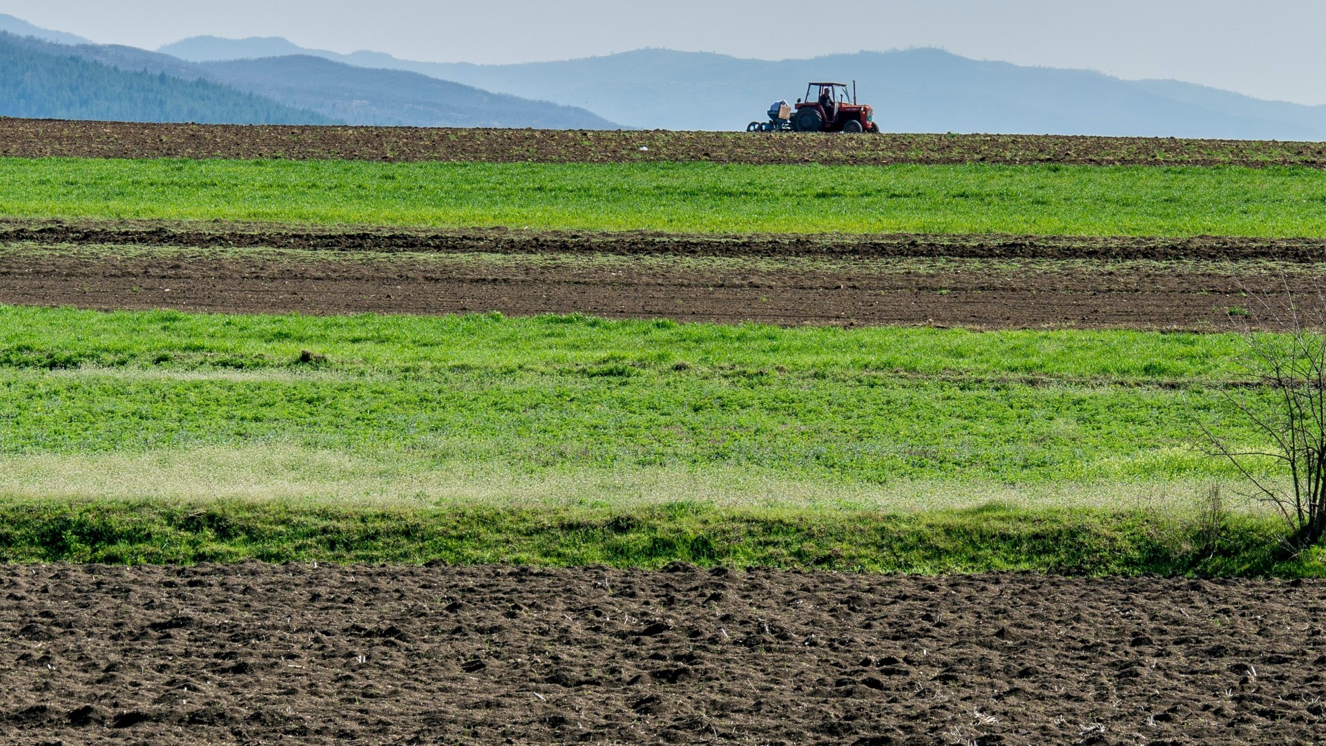 Desenvolvimento de Projectos de Agricultura