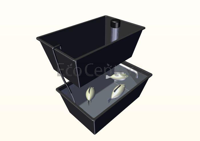 sistema domestico aquaponia
