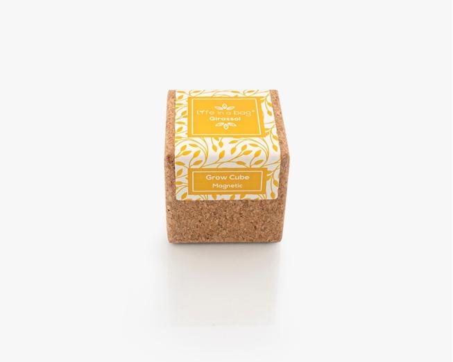 Grow Cube Girassol