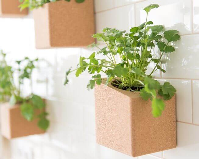 Grow cork block