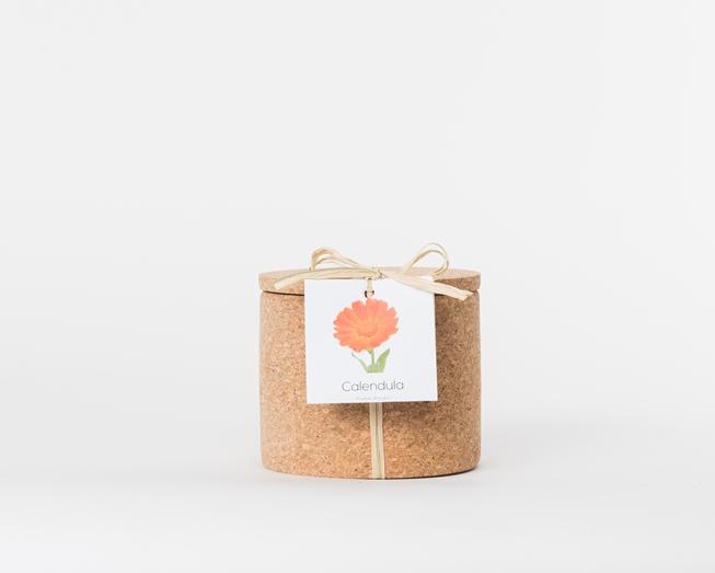 Grow Cork Calêndulas