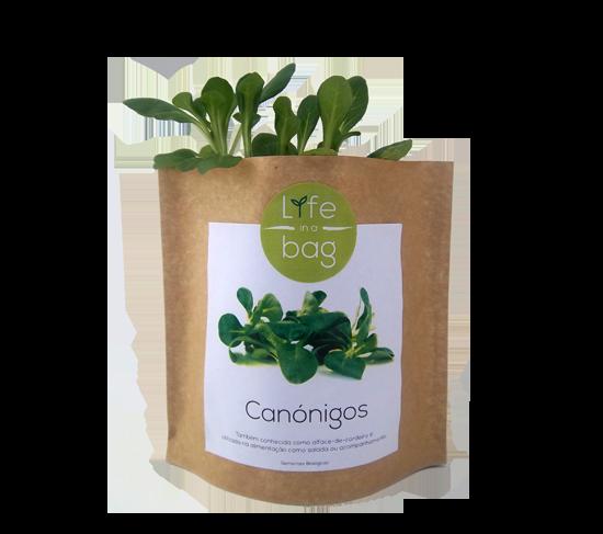 Grow Bag Canónigos