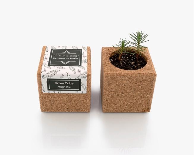 Grow Cube Pinheiro de Natal (verde)