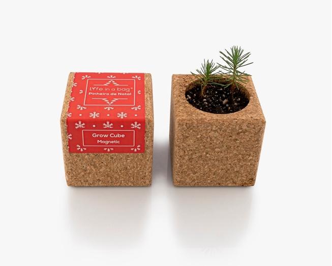 Grow Cube Pinheiro de Natal (vermelho)