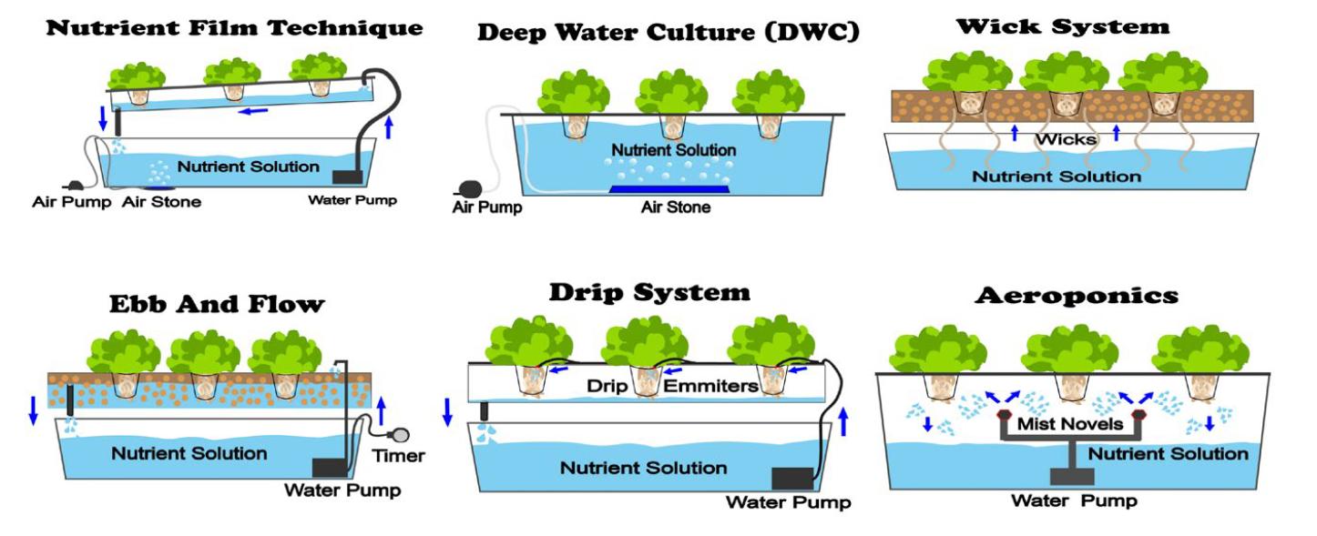 tipos de sistemas hidroponia