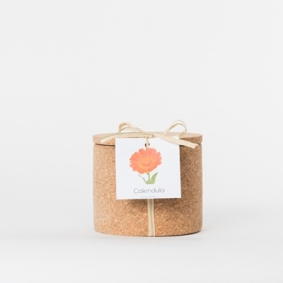 Grow Cork Calêndulas