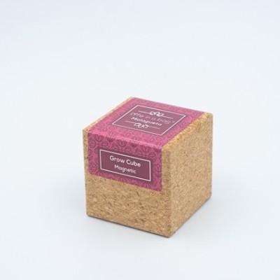 Grow cube Malagueta