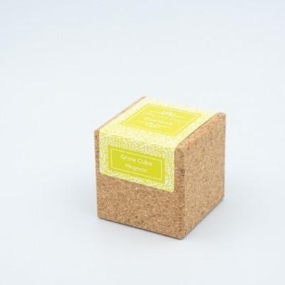 Grow Cube Coentros