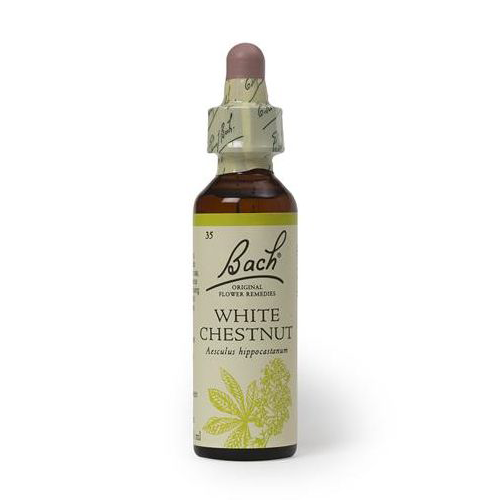 White Chestnut 20ml Floral Bach