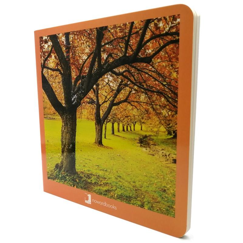 Outono livro nowordbooks