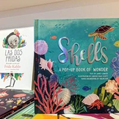 Shells - A Pop-Up Book Of Wonder