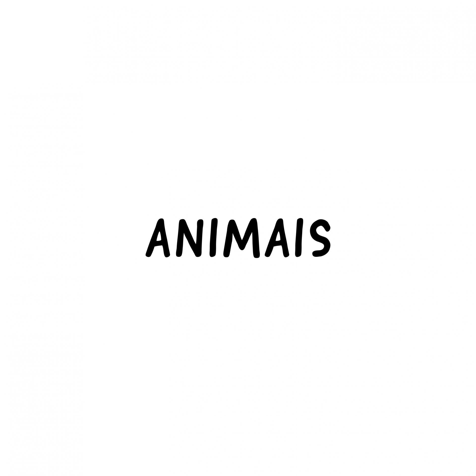 Animais 03