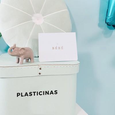 Plasticinas 04