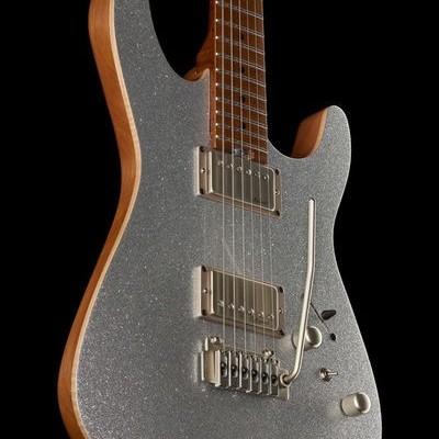 Harley Benton Fusion-II HH Roasted SSP