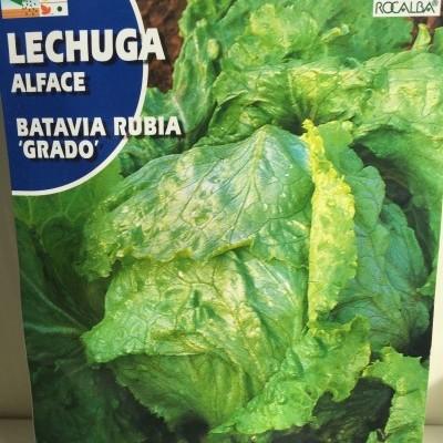 Lechuga Grado
